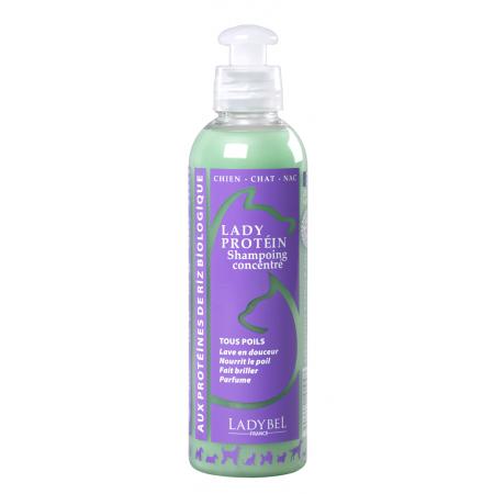 LADY proteínový šampón 4l